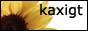 Kaxigt